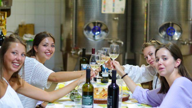 Wine tasting Sorrento - Gastronomic Tour